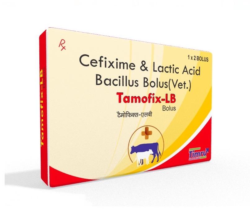 Veterinary Cefixime & Lactic Acid Bacillus Bolus